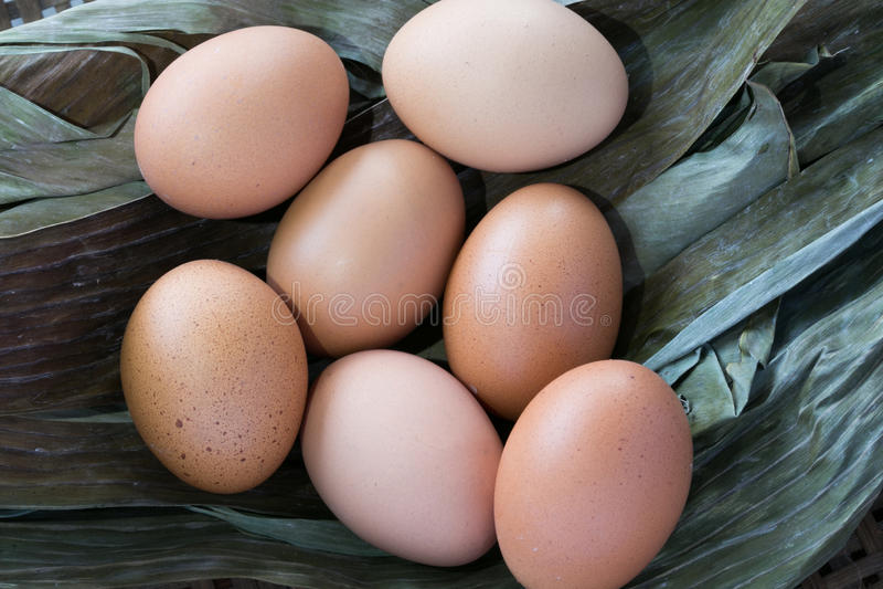 Huevos en la hoja seca del plátano foto de archivo