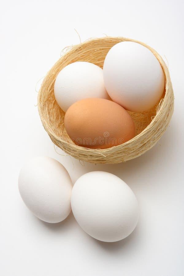 Download Huevos en la jerarquía 2 imagen de archivo. Imagen de fondo - 1286691