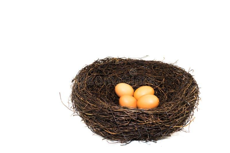 Huevos en la jerarquía artificial grande del pájaro imagenes de archivo