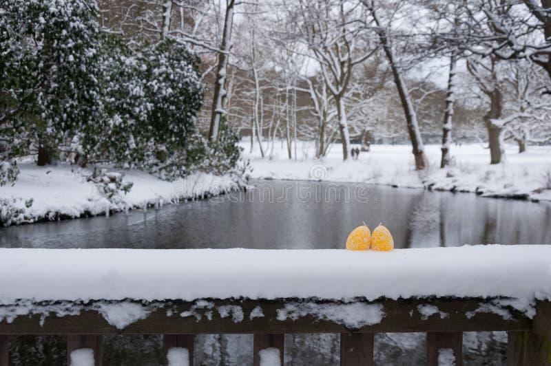Huevos en la nieve en pascua fotos de archivo libres de regalías
