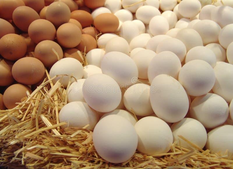 Huevos en la paja fotos de archivo