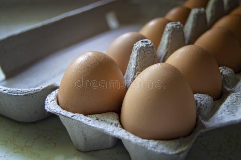 Huevos en un cart?n fotografía de archivo