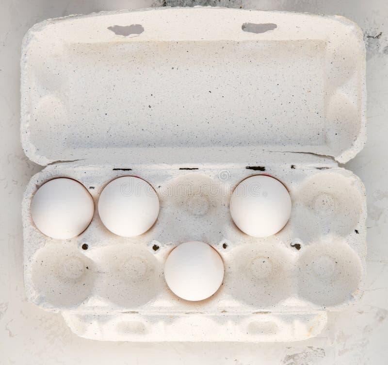 Huevos en una caja especial Cuatro huevos blancos foto de archivo