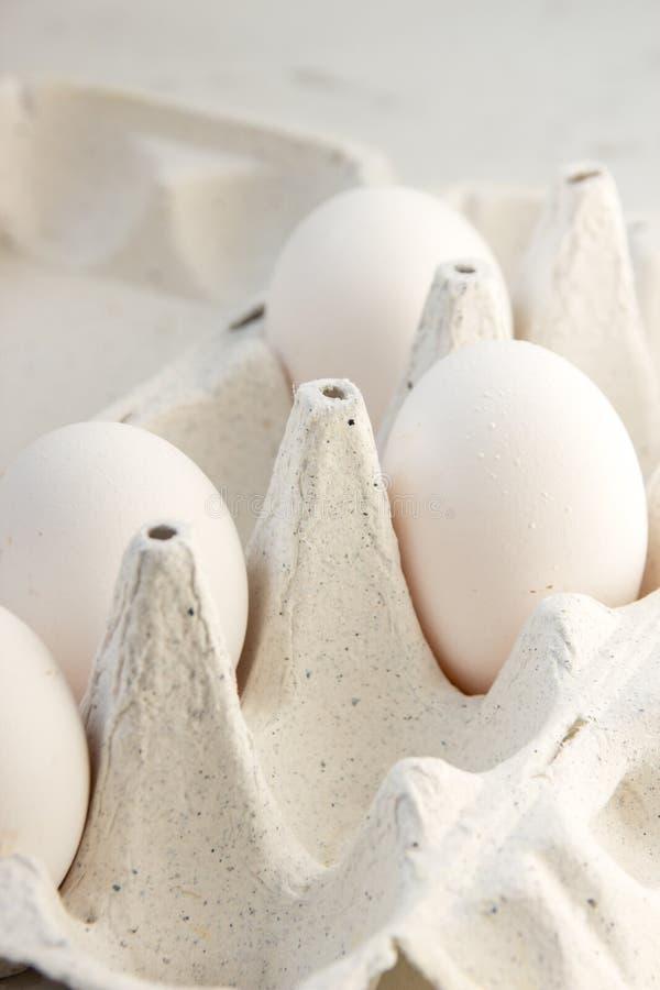 Huevos en una caja especial Cuatro huevos blancos fotografía de archivo libre de regalías