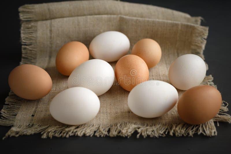 Huevos en una lona en un fondo oscuro foto de archivo libre de regalías
