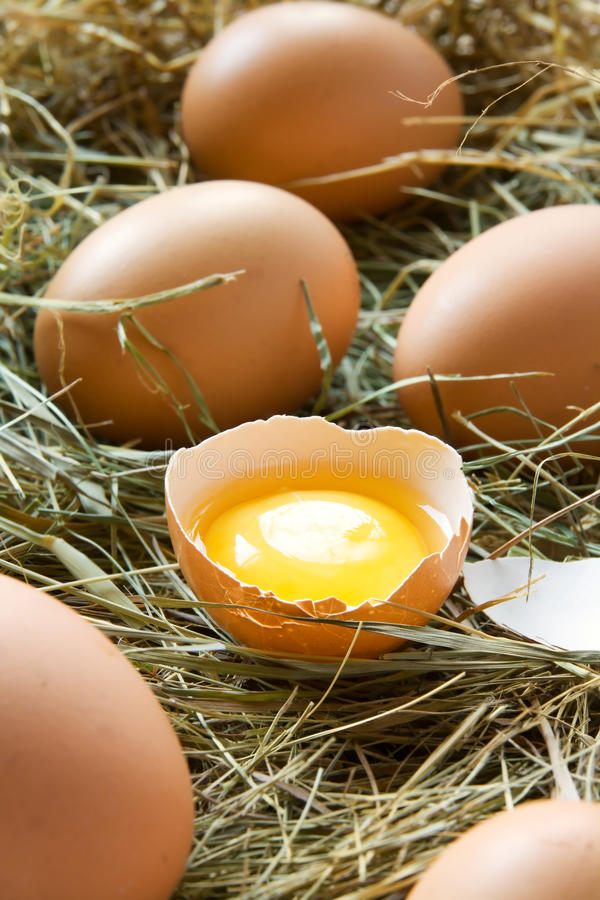 Huevos frescos fotografía de archivo libre de regalías