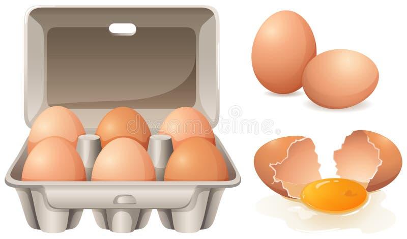 Huevos frescos stock de ilustración