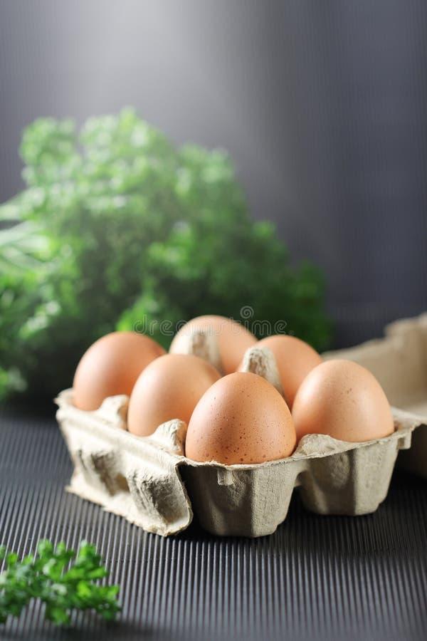 Huevos frescos del pollo en caja del cartón en fondo negro imagen de archivo