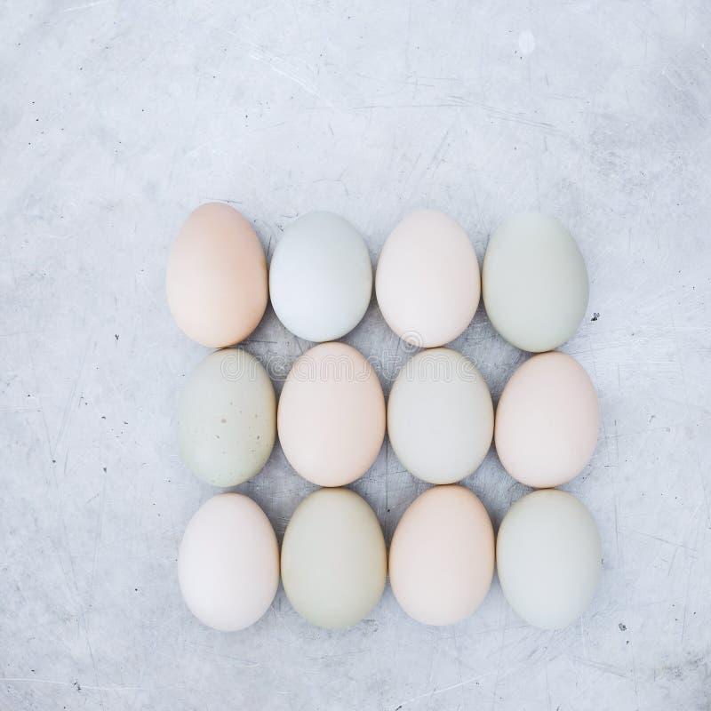 Huevos frescos del pollo en fondo rústico del metal foto de archivo