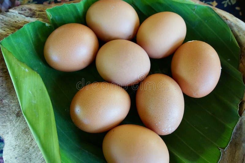 Huevos frescos del pollo en las hojas del plátano como fondo fotografía de archivo