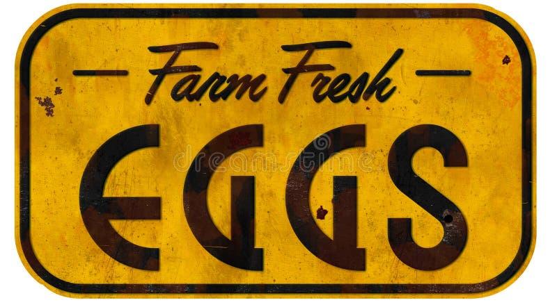 Huevos frescos Tin Sign fotos de archivo libres de regalías