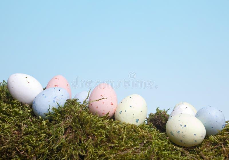 Huevos manchados en musgo imágenes de archivo libres de regalías