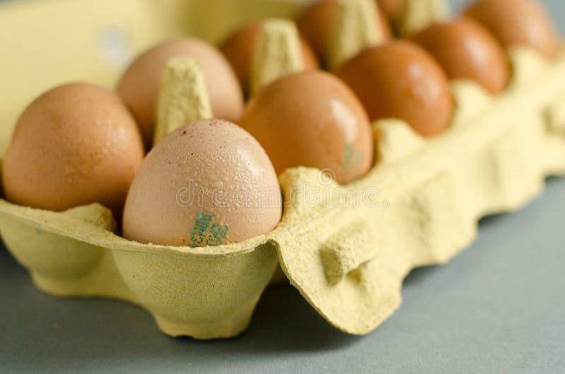 12 huevos marrones en cartón amarillo del huevo fotos de archivo