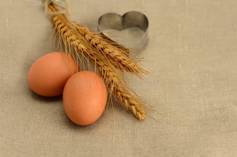 Huevos marrones frescos fotografía de archivo