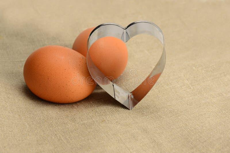 Huevos marrones frescos imágenes de archivo libres de regalías