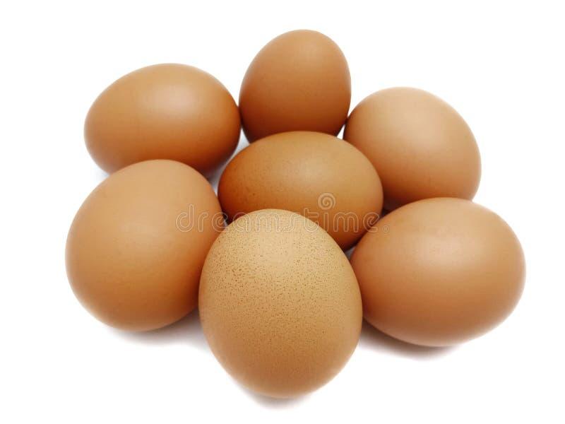 Huevos marrones frescos crudos del pollo foto de archivo