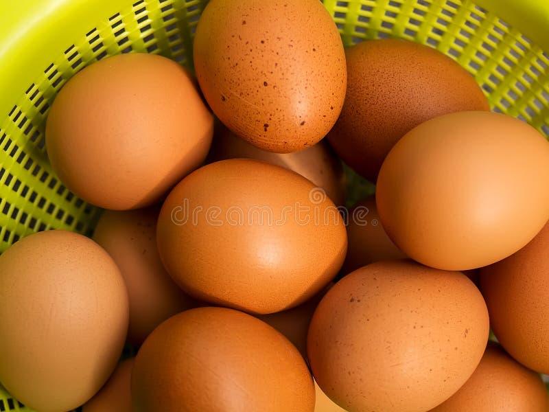 Huevos marrones frescos del pollo en un primer plástico verde de la cesta Cesta con los huevos crudos fotografía de archivo libre de regalías