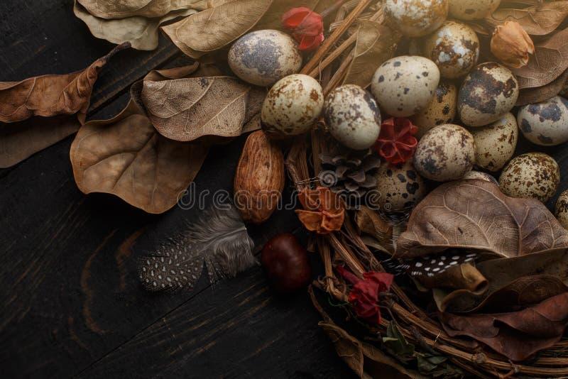 Huevos negros en una jerarquía de ramas secas en un tablero negro Estilo de Pascua foto de archivo libre de regalías