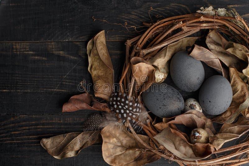 Huevos negros en una jerarquía de ramas secas en un tablero negro Estilo de Pascua fotos de archivo libres de regalías