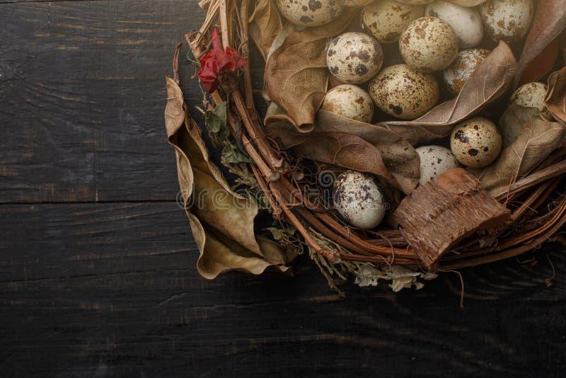 Huevos negros en una jerarqu?a de ramas secas en un tablero negro Estilo de Pascua fotos de archivo
