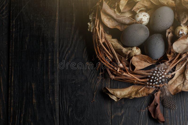 Huevos negros en una jerarqu?a de ramas secas en un tablero negro Estilo de Pascua imagenes de archivo