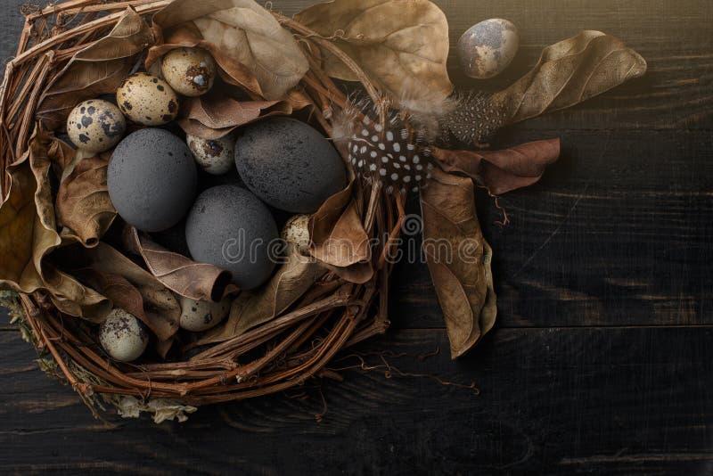Huevos negros en una jerarqu?a de ramas secas en un tablero negro Estilo de Pascua fotografía de archivo libre de regalías