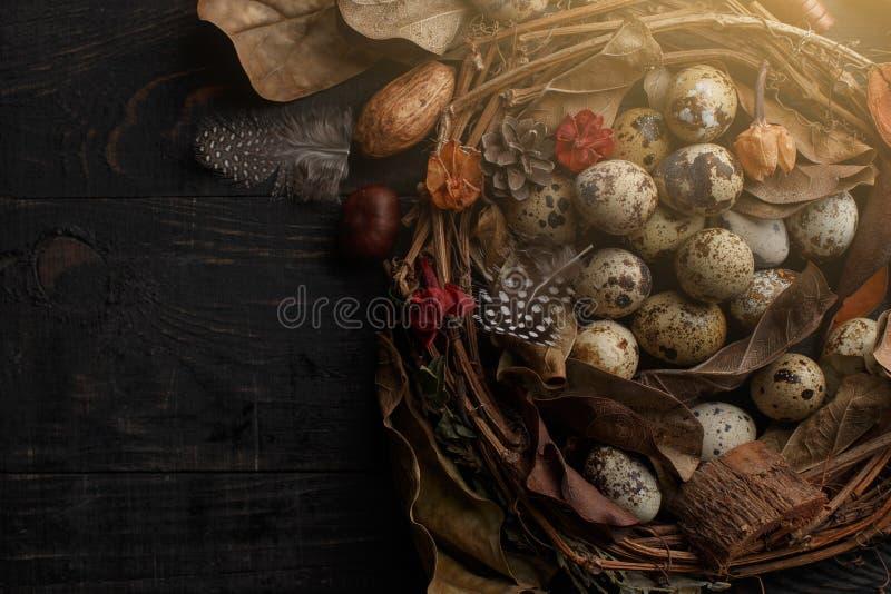Huevos negros en una jerarqu?a de ramas secas en un tablero negro Estilo de Pascua fotos de archivo libres de regalías