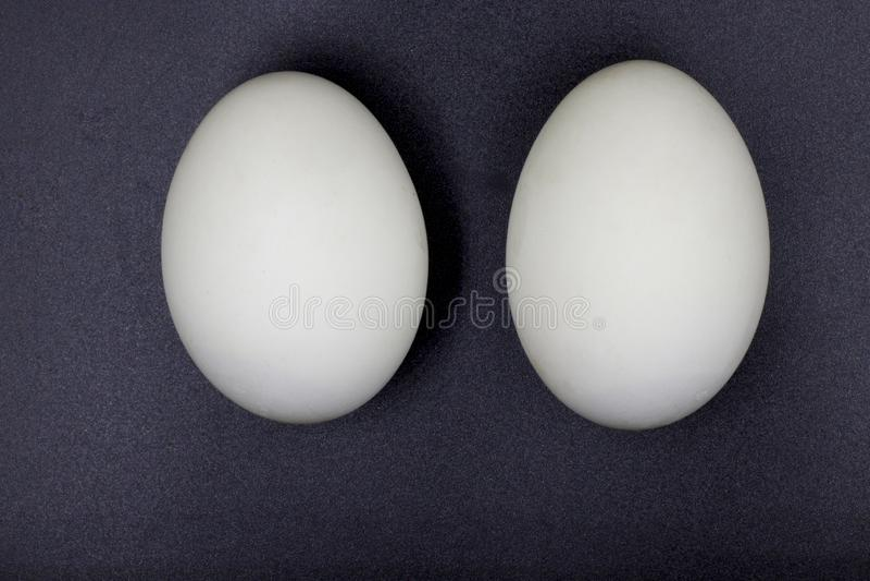 Huevos preservados del pato Aislado en fondo negro fotografía de archivo libre de regalías