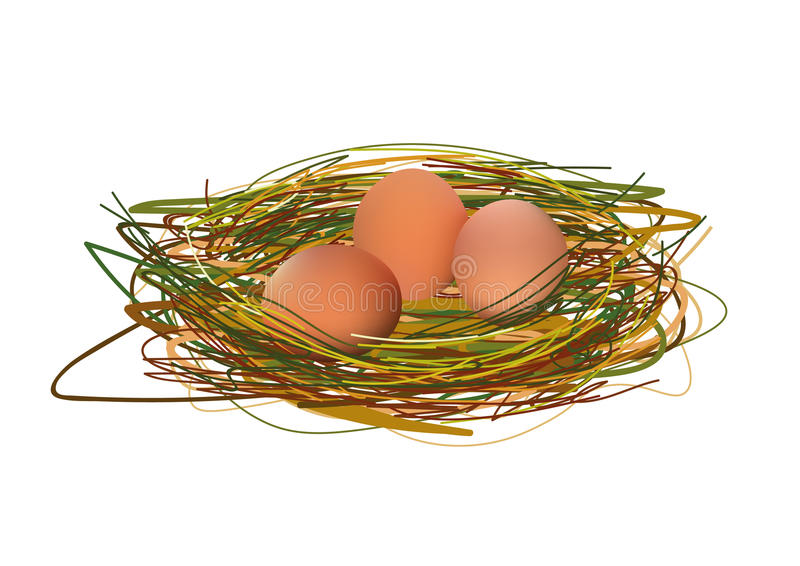 Huevos realistas en el ejemplo del vector de la jerarquía aislado en el icono blanco del fondo libre illustration