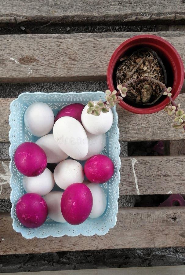 Huevos rojos y blancos en una bandeja con la planta de la decoración al lado de ella imagen de archivo libre de regalías
