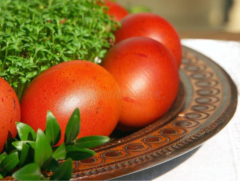Huevos y berro de Pascua fotografía de archivo