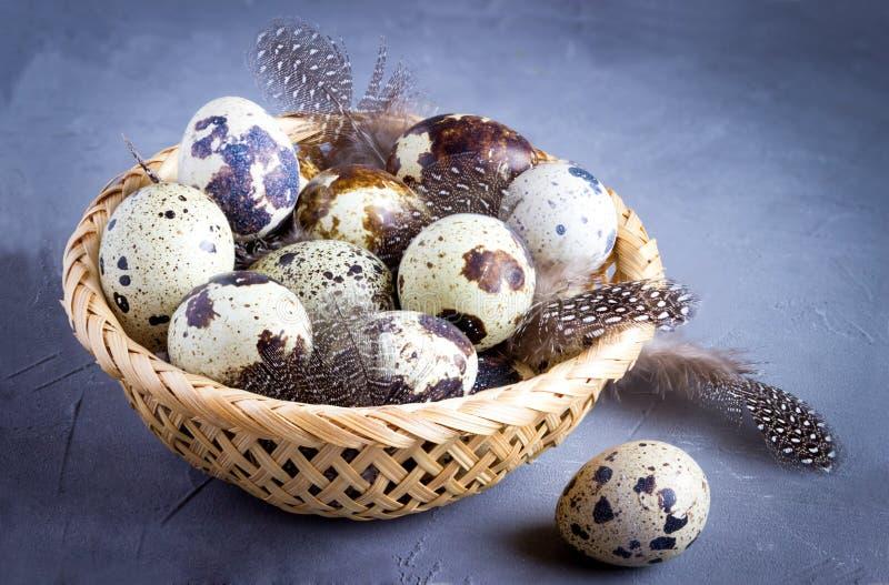 Huevos y plumas de codornices en una cesta imagen de archivo libre de regalías