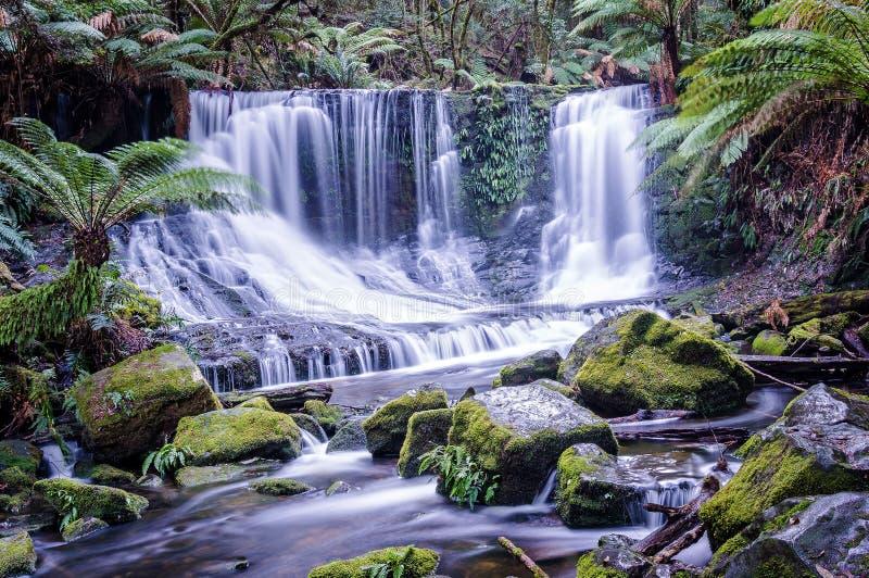 Hufeisenfälle in Berg-Feld-Nationalpark, Tasmanien lizenzfreie stockfotos