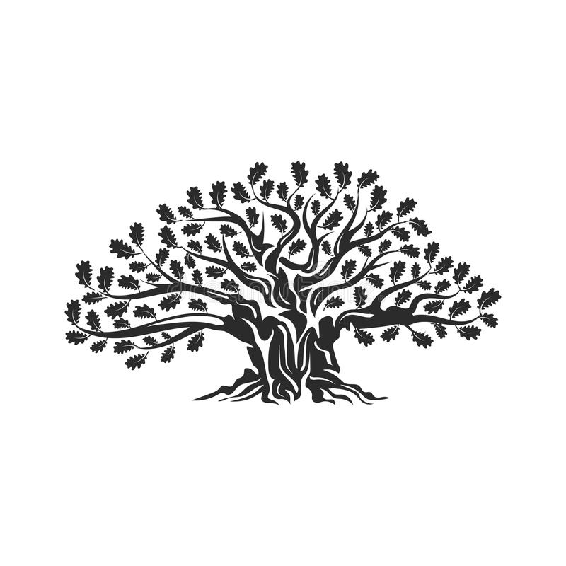 Free Huge And Sacred Oak Tree Silhouette Logo Badge Isolated On White Background. Stock Images - 105166064