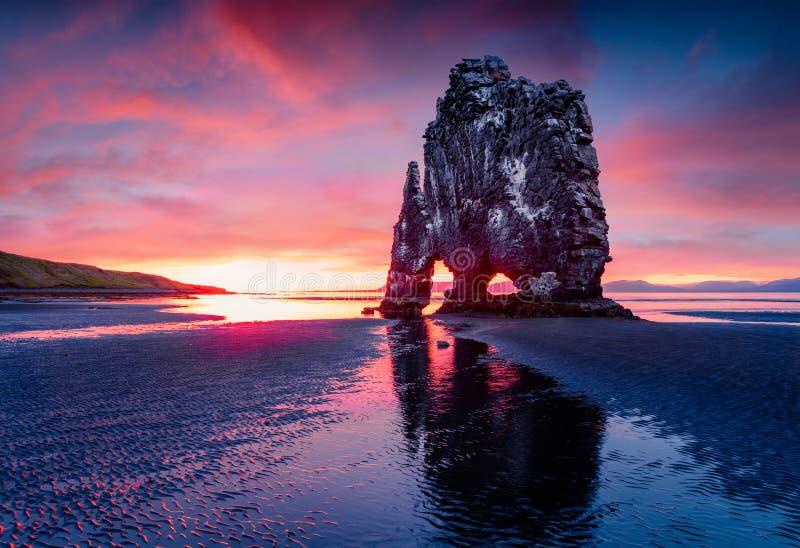 Huge basalt stack Hvitserkur on the eastern shore of the Vatnsnes peninsula. Colorful summer sunrise in northwest Iceland, Europe royalty free stock images
