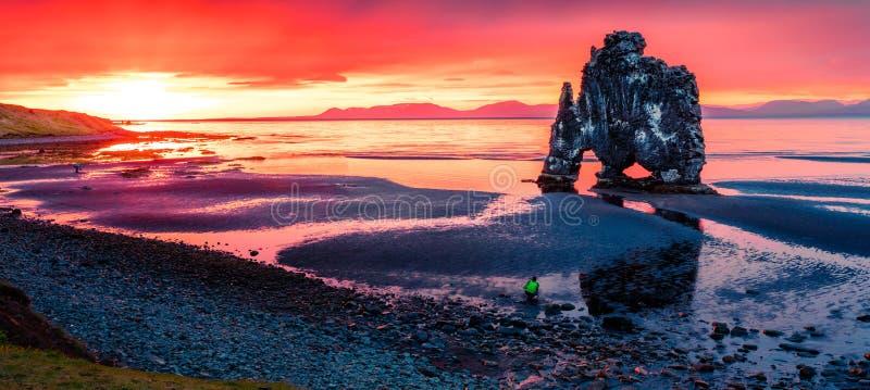 Huge basalt stack Hvitserkur on the eastern shore of the Vatnsnes peninsula. Colorful summer sunrise in northwest Iceland, Europe royalty free stock image