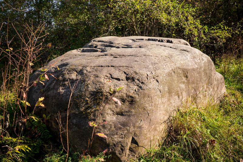 A huge boulder of glacial origin in the forest stock photo