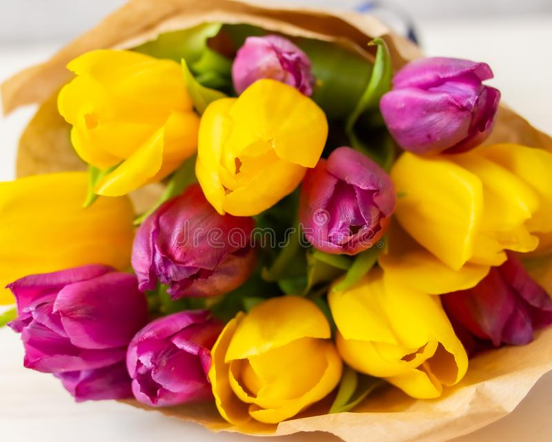 A huge bouquet of yellow purple tulips close-up. Fresh natural spring flowers, blossom tulip royalty free stock photo