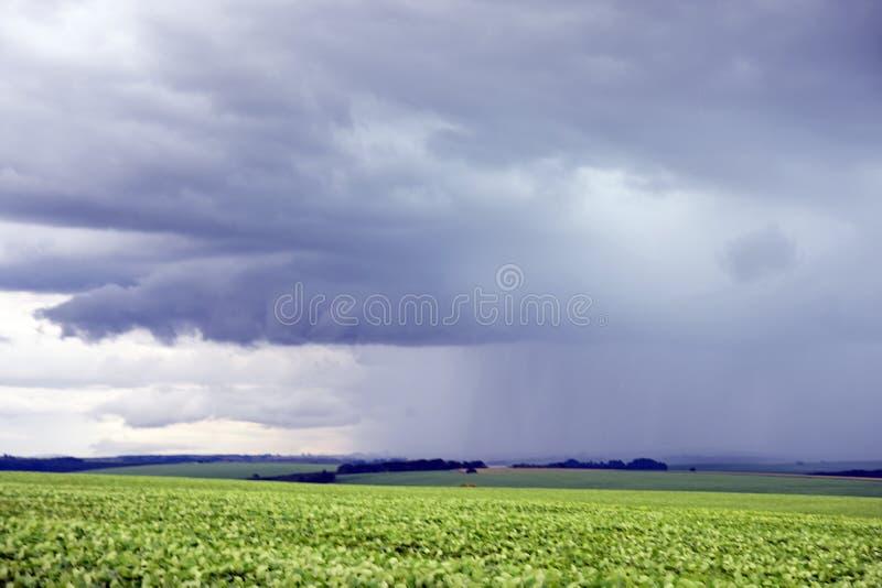 Huge dark rain clouds on a nature field scene.  stock photo