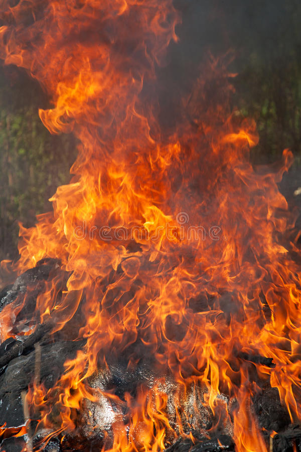 Download Huge fire stock image. Image of ardor, burn, woods, glow - 25806555