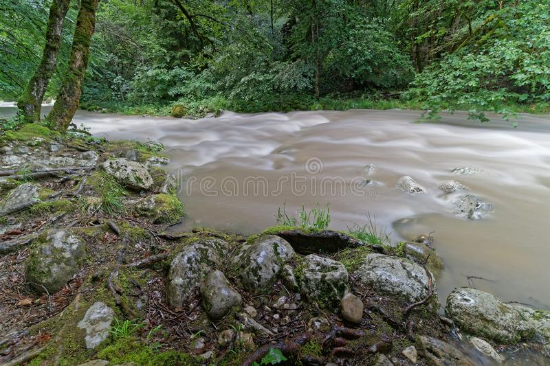 Huge flow on a river after the night storm royalty free stock photos