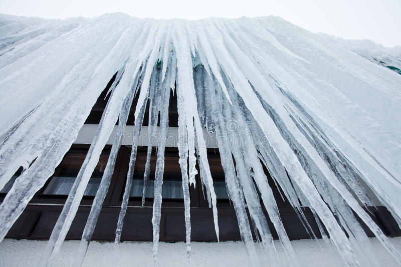 Download Huge frozen icicles stock photo. Image of nature, iced - 23468224