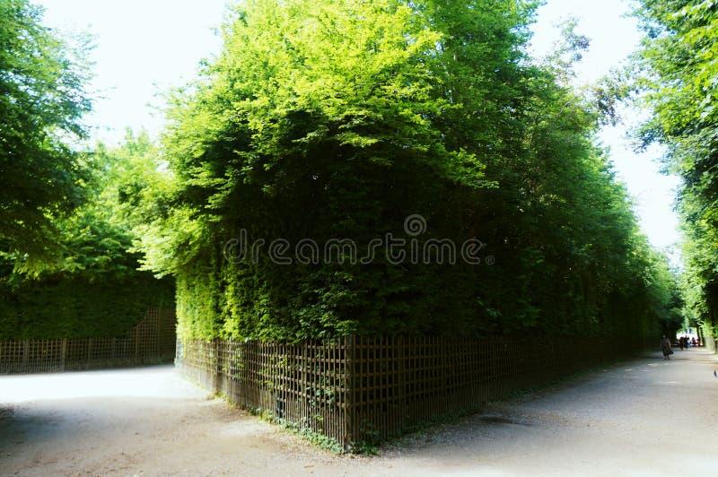 Huge garden in Palace of Versailles. Paris stock photo