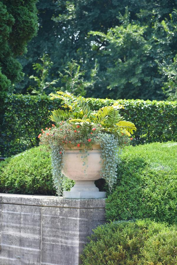 Huge garden planter with greenery on ledge. Huge garden planter with flowerrs on ledge in forest royalty free stock photos