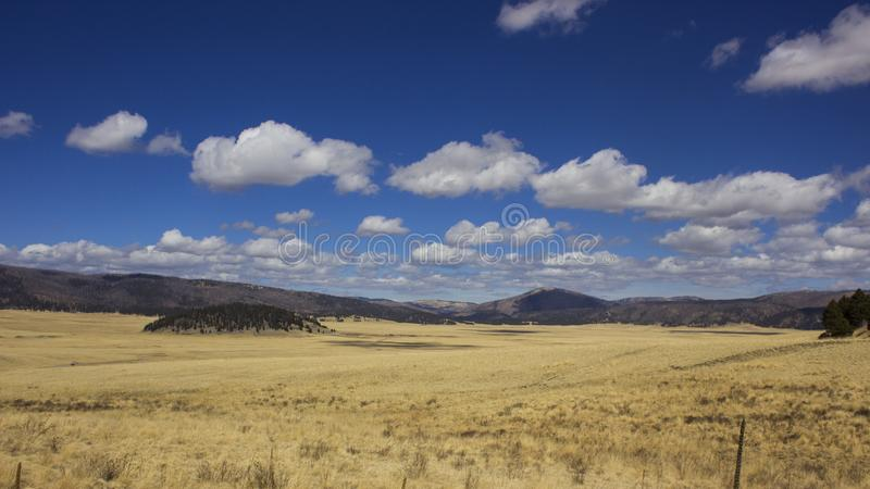 Valles Caldera, New Mexico. A huge meadow in the mouth of an acient volcano in Valles Caldera National Monument, New Mexico royalty free stock photos