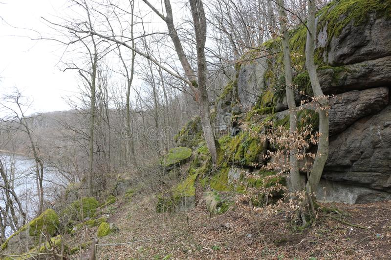 Huge moss-covered boulders lie on the slopes of the forest.  royalty free stock photos