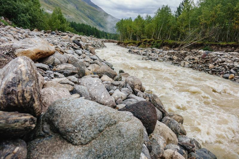 a huge number of stones along the running mountain river in the forest royalty free stock image