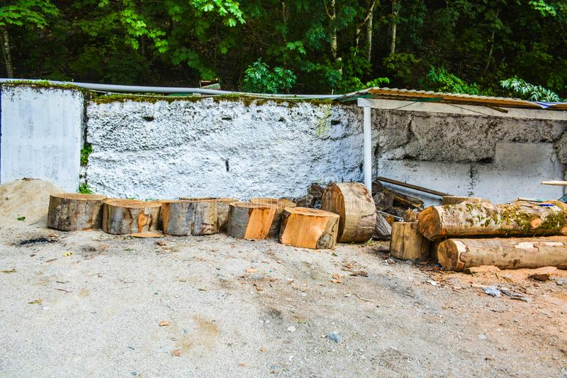 Huge pieces of sawn tree trunks for firewood. Wooden chocks for heating stacked in the yard stock image