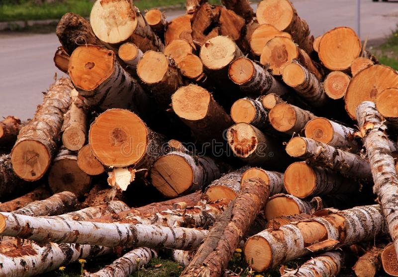 A huge pile of different logs stock photos