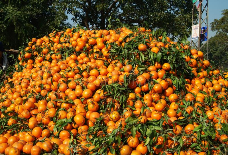 Huge pile of oranges on sale royalty free stock photography